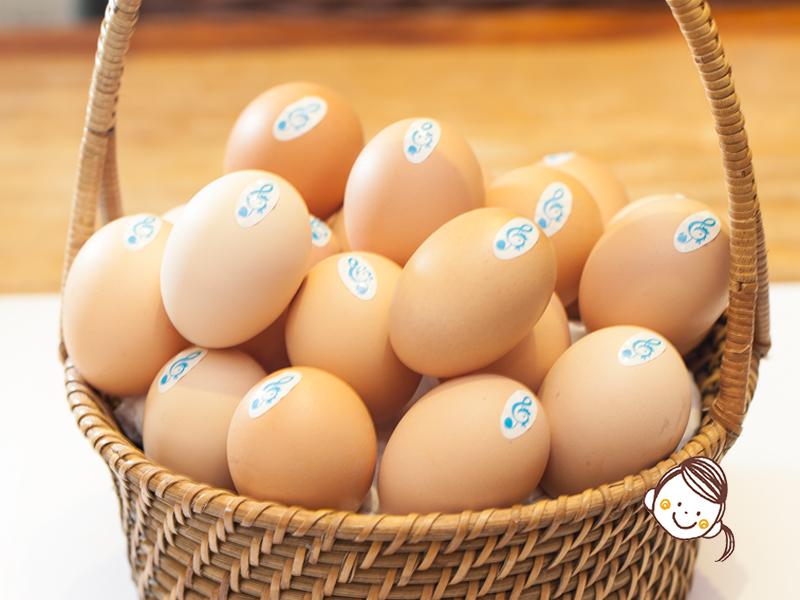 本地音樂雞蛋