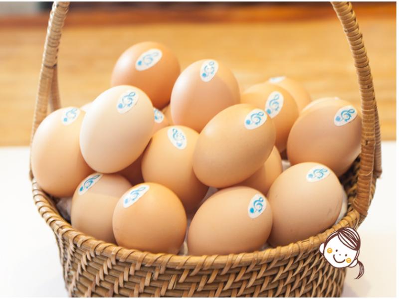香港 音樂農莊音樂雞蛋 6隻